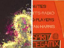 Yan Harris Flyers